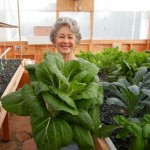 Phyllis Davis, Co-Inventor. Phyllis is President of PFAS LLC and is also the Dean of Aquaponics University.