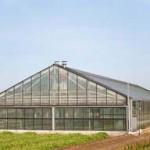 greenhouse1a