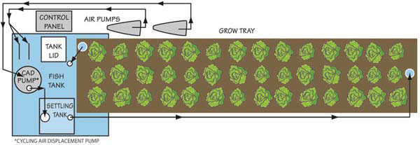 Diagram of one module of a Portable Farms Aquaponics System that feeds 8 people with 200 sq ft of grow space.